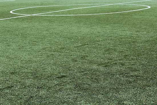 vestacka trava za fudbalske terene