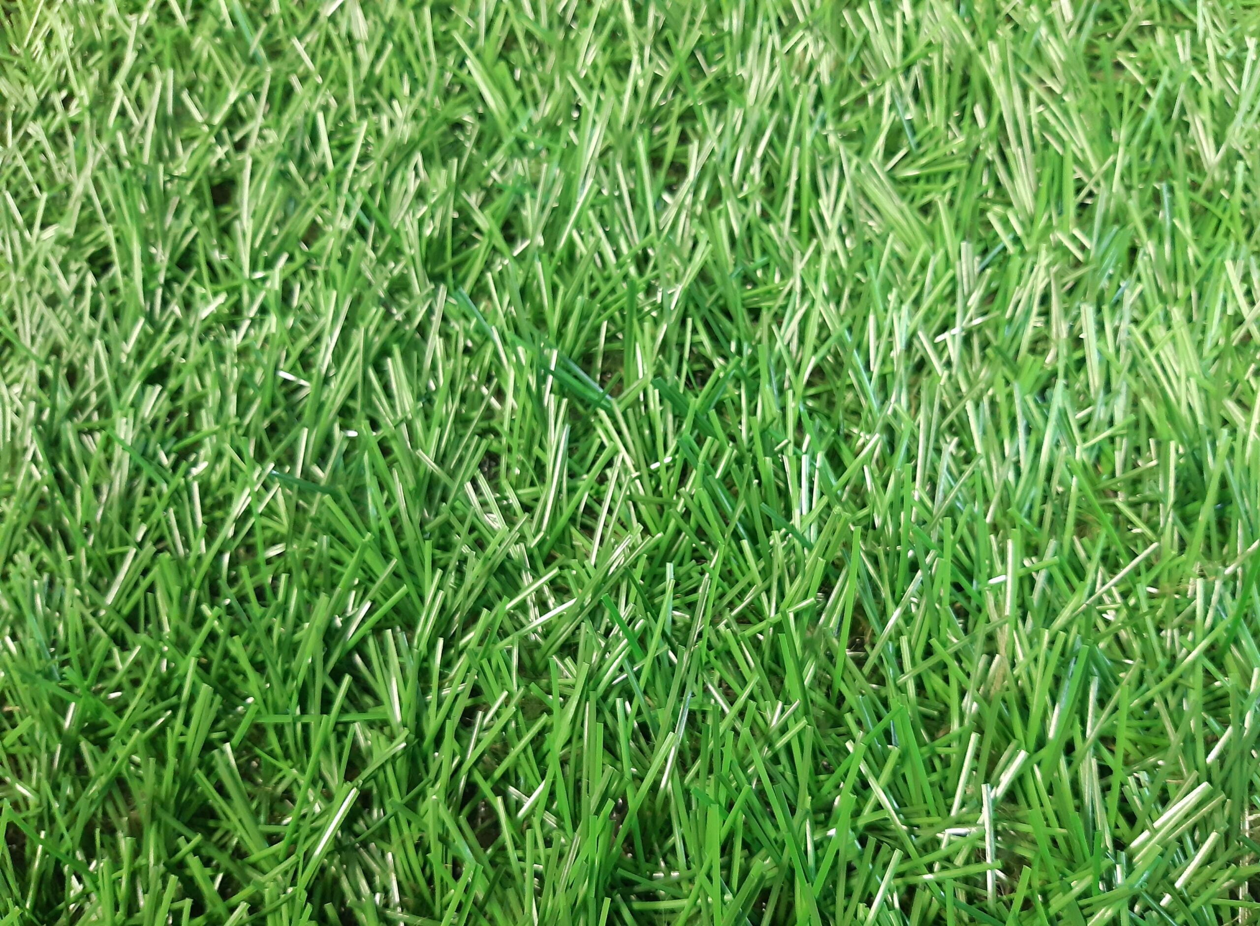 trava za fudbal xwr